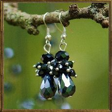 Midnight Sparkle earrings